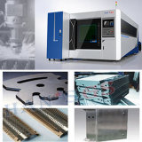 Fabrication 500W 1000W 2000W Protected Metal Fiber Laser Cutting Machine