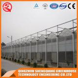 농업 강철 구조물 폴리탄산염 장 온실