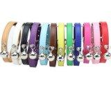 PU 6 색깔 개 고양이 고리 /Leashes /Harness (KC0083)