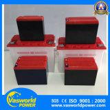 De Zure Batterij van het Lood van het Elektrische voertuig van de goede Kwaliteit 12V45ah voor de Markt van Egypte