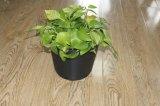 反紫外線2.75L耐久のプラスチック植木鉢(1.52ガロンボリューム)