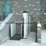 Het het Ziekenhuis Gehandicapte Platform van uitstekende kwaliteit van de Lift van de Rolstoel