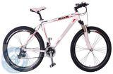 Vélo de montagne d'alliage (HQL-M2691)