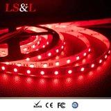 Luz colorida ligera de la cadena de la decoración de RGBW+White LED Ropelight