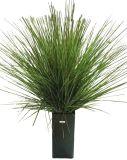 Kunstplanten en bloemen - Onion Grass (10743)