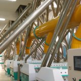 Weizen-Getreidemühle des europäischen Standard-200t/D
