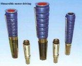 Pompe submersible à puits profond avec la norme ISO9001
