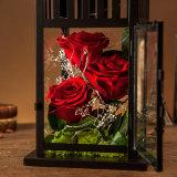 Flor de Rose de la promoción para la Navidad del cumpleaños de la tarjeta del día de San Valentín