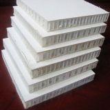 20мм GRP/FRP панелей ячеек PP Honeycomb погрузчик панели кузова