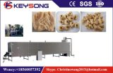 Línea vegetariana de la elaboración de la carne de la soja