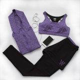 Yoga-Energien-Flex Trocken-Befestigte Hosen-Trainings-Gymnastik Spanx Strumpfhose-Gamaschen Activewear