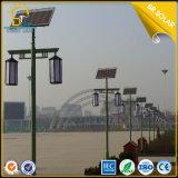 Lámparas solares de la inducción, lámparas de detección solares