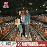 Attrezzature agricole automatiche galvanizzate calde per il pollo di strato (A3L120)
