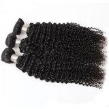 parrucca indiana dei capelli umani del Virgin degli accessori del grado 7A per la donna