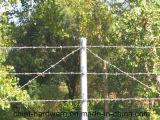 2 hilos 4 puntos Barrera de alambre de púas / Bobina de alambre de púas recubierta de PVC