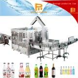 L'eau de bouteille en verre d'animal familier boit l'usine de machine de remplissage de capsuleur de remplissage de Rinser