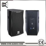 Verein-Leistungs-Lautsprecher-Schrank 15inch 12inch angeschaltene PA-Lautsprecher