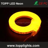 공장 가격을%s 가진 높은 광도 LED 네온 코드