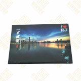 Magnete personalizzato del frigorifero dello stagno del lago Xuanwu