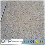 Pavimentadoras amarillas chinas del granito G682 en existencias grandes