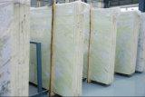Lastre verde chiaro cinesi del marmo della giada di colore di Asia centrale