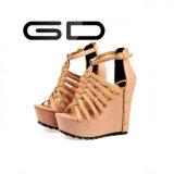 Gdshoe Form-zwängt römisches Brücke-Dame-Absatz-Leder Schuhe