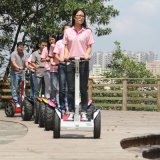 Балансировка нагрузки на 2 колеса E скутер Китай двигатель на заводе для скутера