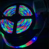SMD2835 60LEDs/M RGB LED 지구 빛