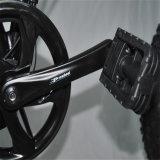 20インチ500Wの脂肪質のタイヤEのバイク(RSEB-507)