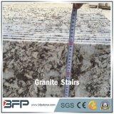 Semelle de granit de Fox de G874 Milou pour la tuile d'escalier de villa et d'étage d'hôtel