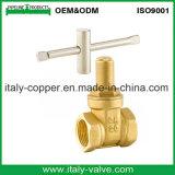 Europäischer QualitätsBrass&Bronze Verschluss-Absperrschieber (AV4066)