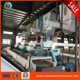 Do moinho industrial da pelota da palma/da máquina da pelota biomassa de Efb equipamento automático