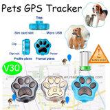 2017마리의 새로운 최신 판매 방수 애완 동물 GPS 추적자 (V30)