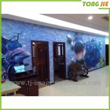 Shanghai Tongjie Piso 3D de calidad pegatina gráfico