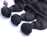 標準的なボディ波状の人間のRemyの毛の織り方