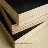 Cine negro/marrón ante el contrachapado para la construcción, madera contrachapada de encofrado de hormigón