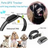 Os animais de estimação impermeável IP66 Rastreador GPS com colar (VE-200)