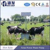 Hanfa 540V hohes Bewässerungssystem 2018 5 Zoll-tiefe Quellwasser-Pumpe (SP-Serien)