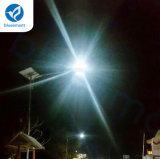 15W-80W 태양 제품 운동 측정기 통합 옥외 LED 거리 정원 재충전용 빛