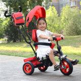 중국 닫집을%s 가진 도매 아이 세발자전거 자전 시트