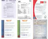 Mattonelle di Decking di 305*305*22 WPC con CE & il certificato del Fsc