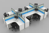 Tipical Wooden 6 Seats Office Cubicles mit Alumnium Frame (SZ-WS310)