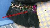 Het Maagdelijke Remy Menselijke Haar van 100%, Uitbreiding van het Haar van het Haar de Bulk, Beste Kwaliteit, Groothandelsprijs