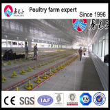 工場供給の肉焼き器の養鶏場装置の鶏の挿入