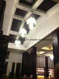 Lampada di Shangdong dell'hotel della sorgente calda - accensione pubblica di zone dell'hotel