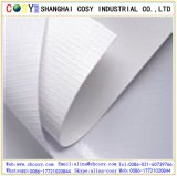bandera laminada Delantero-Lit de 450g (500*300D) Matt para la decoración y la impresión