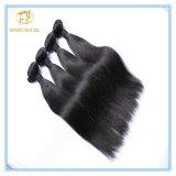 Spitzenverkaufs-unverarbeitete natürliche Farben-peruanisches Jungfrau-Haar Wfpst-001