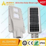 Nueva llegada Fácil instalación 6W-120W LED integrado en una calle la luz solar