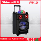 Altoparlante di karaoke Bluetooth della radio professionale 10 di Shinco '' con l'indicatore luminoso del LED