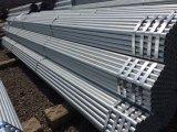 Tubulação de aço galvanizada mergulhada quente dos acessórios Q235 do andaime